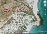 un terrain à vendre à kélibia mansoura 50522361