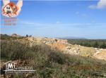 terrain ezzahra