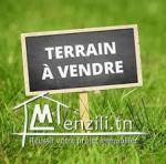 A vendre  un terrain agricole à Morneg
