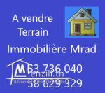AV terrain cloturé zone hôtel nahrawess hammamet