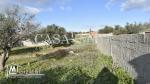 un terrain à jardin d'el menzah2