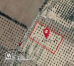 قطعة ارض فلاحية للبيع بزغوان